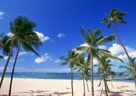 画像保存ハワイ